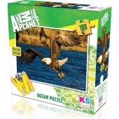 Ks Games Animal Planet Eagle At Hunting