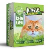 Jungle Kedi Çimi Kutulu (Fileli) 6lı