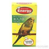 Energy Muhabbet Kuşu Yemi 300 G