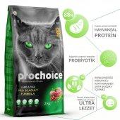 Prochoice Pro36 Lamb Kuzu Etli Yetişkin Kedi...