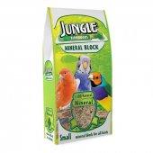 Jungle Mineral Blok Gaga Taşı