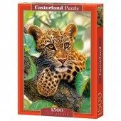 Castorland 1500 Parça Tree Hugger Puzzle