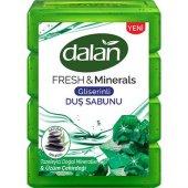 Dalan Fresh Minerals Duş Sabunu Üzüm Çekirdeği 4 x 150g