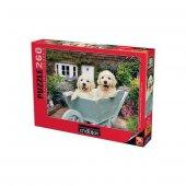 Anatolian Puzzle260 Pcsbahçıvan Köpekler Puppies İn A Wheelbarrow