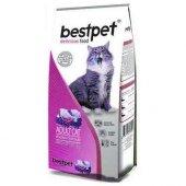 Bestpet Selection Tavuklu Yetişkin Kedi Maması 1 Kg