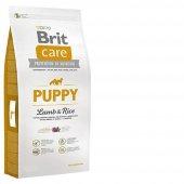 Hamile Ve Yavru Köpek Maması Brit Care Kuzulu...