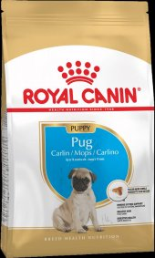 Yavru Pug Cinsi Köpekler İçin Royal Canin Köpek...