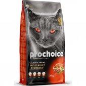 Prochoice Cat Pro 33 Yetişkin Somon Ve...