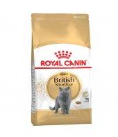 Genç British Shorthair Kedi Maması Royal Canin Mama 4kg