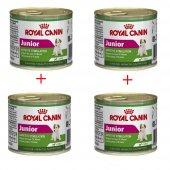 Köpekler İçin Royal Canin Mini Junior Konserve...