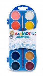 Carioca Sulu Boya 12'li Plastik Kutuda