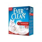 Ever Clean Multiple Cat 6 Lt