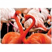 Flamingo Yapboz 100 Parça
