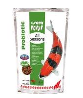 Sera Koi Balıkları İçin Dört Mevsim...