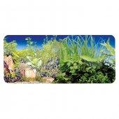 Chicos 30 Cm Bitki Bitki 9065 9051 Plastik Poster