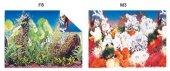Kw Zone Plastik Poster 40 cm 15 mAkvaryum Arka Posteri
