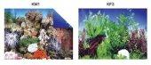 Kw Zone Plastik Poster 48 Cm 15 Makvaryum Arka...