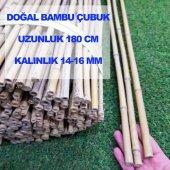 Bambu Bitki Destek Çubuğu 180 Cm (5 Adet)