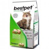 Bestpet Tavuklu Yetişkin Kedi Maması 1 Kg