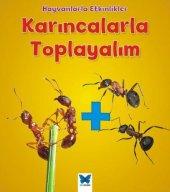 Hayvanlarla Etkinlikler Karıncalarla Toplayalım
