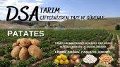 Taze Patates (15 Kg)