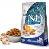 N&D Ocean Düşük Tahıllı Balıklı Portakallı Yetişkin Köpek Maması 12 Kg Skt: 10.2021