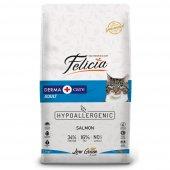 Felicia Yetişkin Somonlu Kedi Maması 12 Kg (Original)