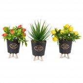 3lü Siyah Mini Plastik Saksıda Yapay Bitkiler Limon Nar Aloevera