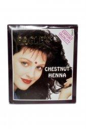 Hint Kınası Kestane Chestnut Henna 1 Pkt 10gr.