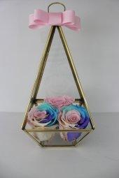 üçgen Teraryum İçinde Raimbow Üçlü Solmayan Gül
