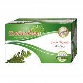 çınar Yaprağı Bitki Çayı 20 Lik Poşet