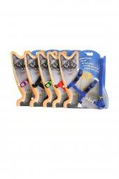 Katzen Kedi Göğüs Tasması Ve Gezdirme Seti