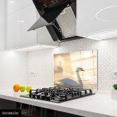 Disegno Cam Ocak Arkası Koruyucu 50x50 Cm Kuğu