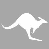 İkon Kanguru Stencil Tasarımı 30 x 30 cm