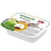 Bio Pet Active Grass Kit Natual Kedi Çimi