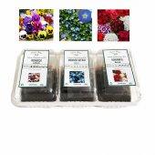 Çiçek Yetiştirme Kiti (Tip5)