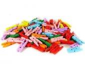 Renkli Mini Ahşap Mandal (100 Adet)