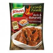 Knorr Tavuk Çeşnisi Acılı Baharatlı 12li Paket...