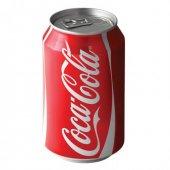 Coca Cola Kutu 330ml 24lü