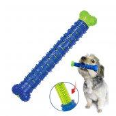 Köpek Diş Temizleme Oyuncağı Chewbrush