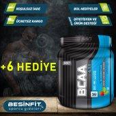 Ssn Bcaa 4.1.1 + Palatinose 350 Gr + 4 Hediye