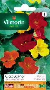 Vilmorin Karışık Renkli Latin Çiçeği Tohumu