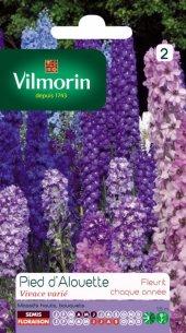 Vilmorin Hezaren Çiçeği - Süvari Mahmuzu Çiçeği Tohumu