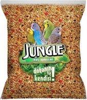 Jungle Muhabbet Kuşu Yemi 500 Gr