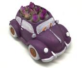 Araba Bonsai Saksısı