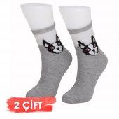Bolero Desenli Şeffaf  Kadın 2li Köpekli Çorap