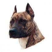 Trixie Köpek Çıkartması,st Stafford Terrier 1 Adet