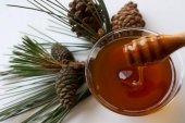 Doğal Çam Balı (500 Gr)