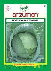 Arzuman Sebze Beyaz Lahana Tohumu