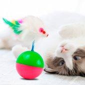 Kedi Oyun Topu İlgi Çekici Fareli Hacı Yatmaz Kedi Egzersiz